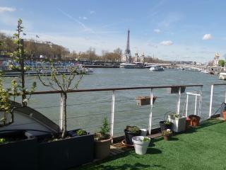 Une Peniche Sur la Seine , au Coeur de Paris - Paris vacation rentals