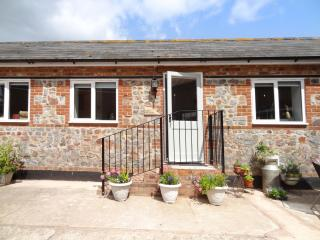 Comfortable House with Internet Access and DVD Player - Plymtree vacation rentals
