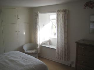 Vine Cottage - Kingsbridge vacation rentals