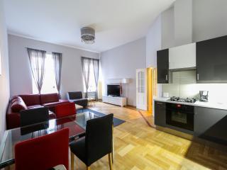 3 Bedroom Apartment in central location - Saint Petersburg vacation rentals