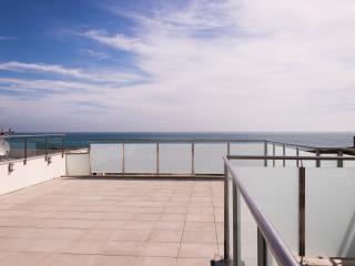 Villa sur la plage entre mer et lagune - Saint-Cyprien-Plage vacation rentals