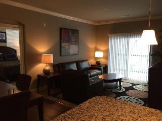 6-211-Gorgeous 2 Bd at Prairiefire! - Overland Park vacation rentals
