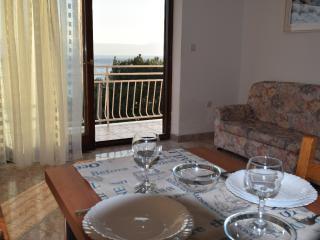 Nice Condo with Internet Access and A/C - Novi Vinodolski vacation rentals