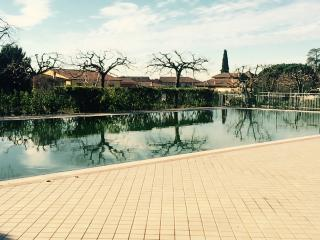 Splendido appartamento arredatissimo piscina - Pacengo vacation rentals