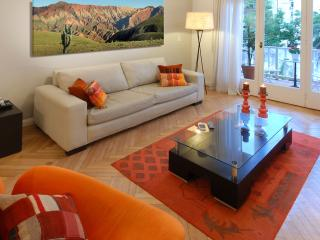Lovely 3 bedroom Condo in Buenos Aires - Buenos Aires vacation rentals