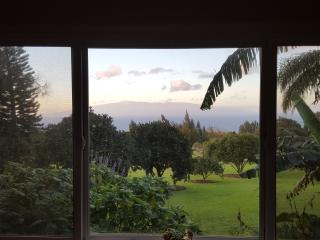 Aloha Cottage With A View - Hawi vacation rentals