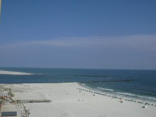 Phoenix  East  *BEACHFRONT* 4th Floor 1br / 1 bath - Orange Beach vacation rentals