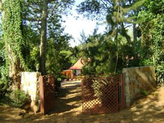 Mrefu Farm Lodge - Kilimanjaro - Marangu vacation rentals