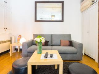 Charming Studio in the Heart of the Lating Quarter, Paris - Paris vacation rentals
