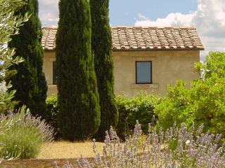 Casale di Villore - FRANTOIO - Poggibonsi vacation rentals