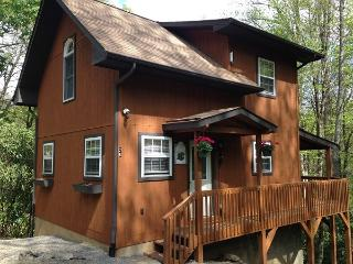 HONEYMOON DELUXE,Jacuzzi + Hot Tub, CREEK WIFI, AC - Maggie Valley vacation rentals