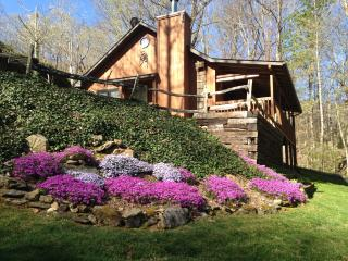 Johnson Branch, Creek, Wifi, Hot Tub Privacy Clean - Maggie Valley vacation rentals