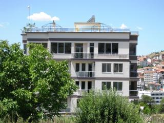 One bedroom apartment near the park in Sandanski - Sandanski vacation rentals