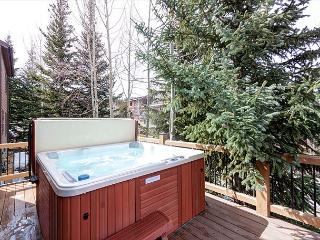 Breckenridge Ski-in/Ski-Out with Hot Tub - 1 Block From Main Street - Breckenridge vacation rentals