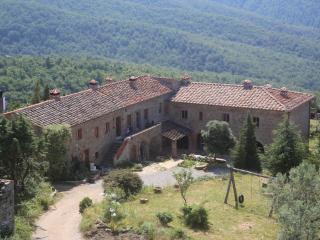 Bio Agriturismo Reggioli-Appartamento per 6 pers. - Gaiole in Chianti vacation rentals