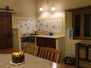 Bio Agriturismo Reggioli - Appartamento Falegname - Gaiole in Chianti vacation rentals