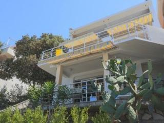 Apartment `Garden` Beachfront Villa - Bar vacation rentals