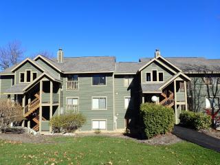 Nice Hidden Valley Condo rental with Internet Access - Hidden Valley vacation rentals