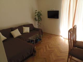 Apartments Pletikosa- one bedroom - Brodarica vacation rentals