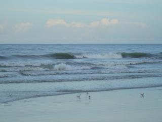 Gorgeous Condo with Internet Access and A/C - Cocoa Beach vacation rentals
