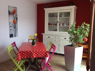 Résidence proche centre commercial et Puy du fou. - Cholet vacation rentals