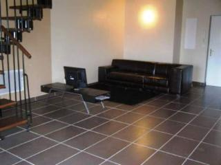 Appartement standing de 128m² - Vieille-Toulouse vacation rentals