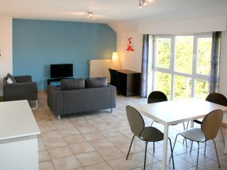 Appartement spacieux 3 chambres près Mons/La Louv. - La Louviere vacation rentals