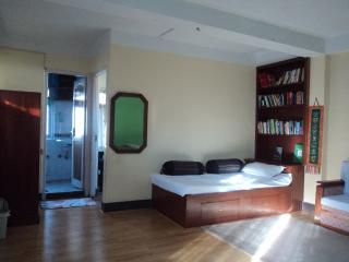 small, cozy apartment near Thamel, Kathmandu - Kathmandu vacation rentals