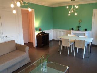 LOFT 140 m² 15 mn CHAMPS-ELYSEES - Nanterre vacation rentals