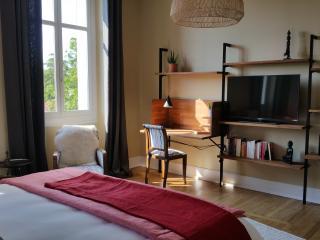 Un havre de paix en centre-ville - Chambre Ethniqu - Albi vacation rentals