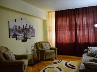 2 bedroom Condo with Washing Machine in Sighisoara - Sighisoara vacation rentals