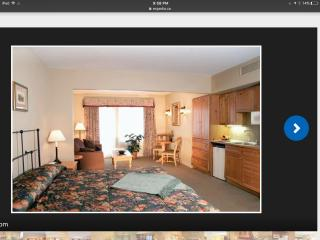 Carriage Hills Resort Studio available July 1-8th - Shanty Bay vacation rentals