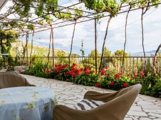 TH03546 Apartments Blaženka / A2 / One Bedroom - Omis vacation rentals