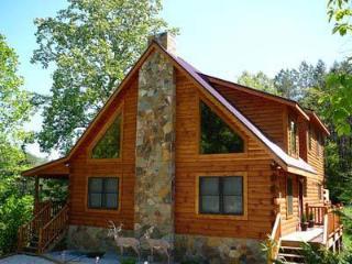 Chalet du' Mont - Bryson City vacation rentals