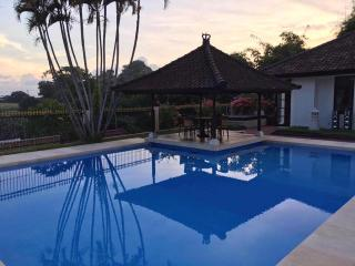 Spacious 4 Bedroom Villa with Pool & River View - Sanur vacation rentals