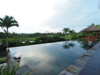 Relaxing two bedroom private villa in Ubud Bali - Ubud vacation rentals