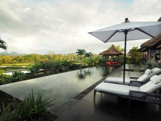 Relaxing two bedroom private villa in Ubud Bali - Ubud vacation rentals