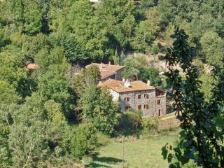 Rustic house with BBQ and terrace - Saint-Basile vacation rentals