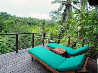 Relaxing three bedroom private villa in Ubud Bali - Ubud vacation rentals
