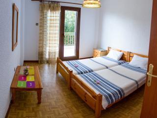 Beachfront holiday apartment in Halkidiki-DICHTI 1 - Polichrono vacation rentals