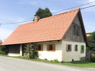 Nice House with Internet Access and Central Heating - Leibnitz vacation rentals