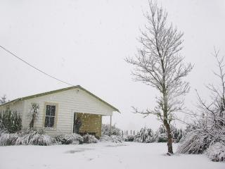 Ohakune Ski House & Summer Bach - Ohakune vacation rentals