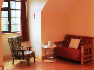 Comfortable 1 bedroom Killaloe B&B with Central Heating - Killaloe vacation rentals
