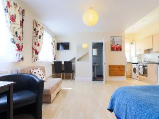 Specious studio in Harrow 46c - London vacation rentals
