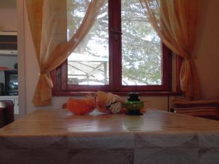 35048 - 43666 - Maslinica vacation rentals