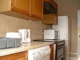 Family Apartment near Camden - London vacation rentals