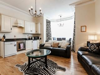 The Michael Collins apartment. - Dublin vacation rentals