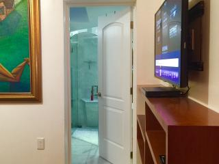 Beautiful House in Coconut Grove with A/C, sleeps 2 - Coconut Grove vacation rentals