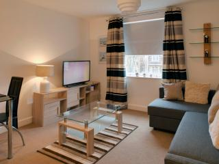flat ideal for couples/families/professional - Cardiff vacation rentals