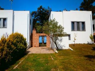 Thassos Rachoni Villa Sofia for 7 persons on frond - Skála Rakhníou vacation rentals